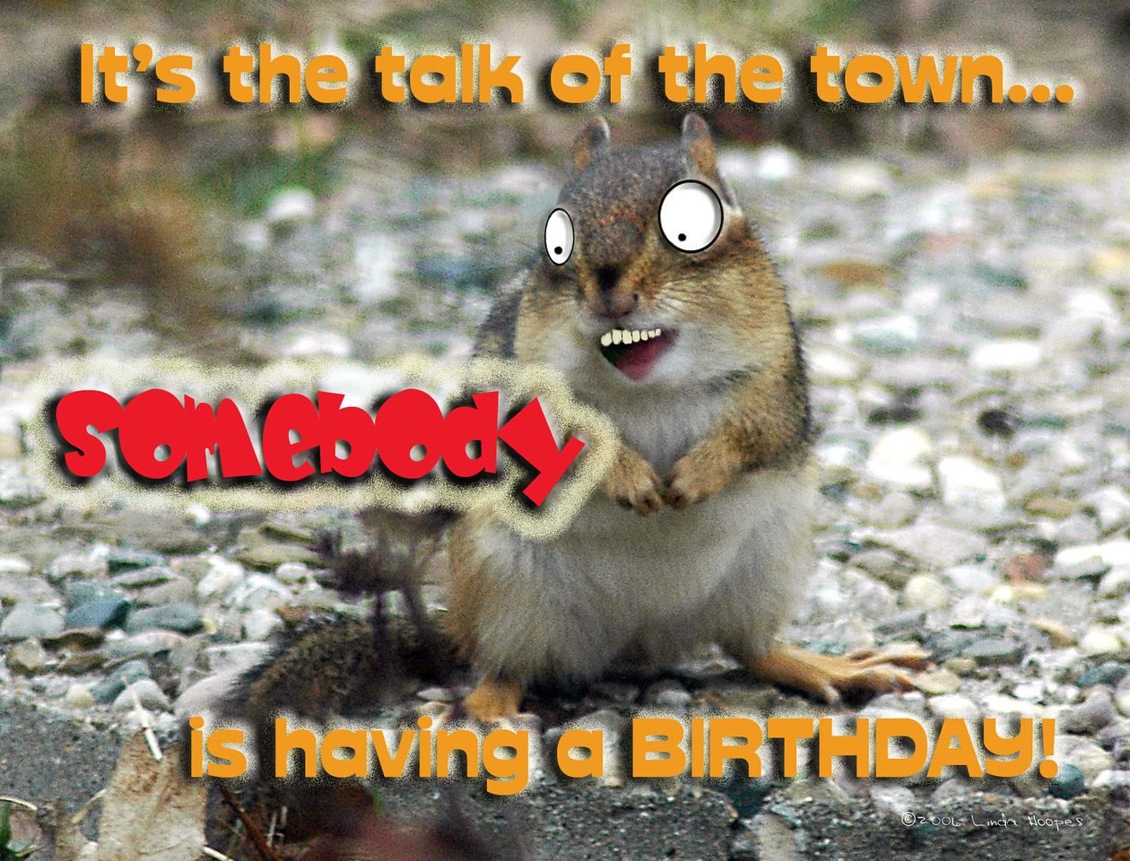 Humorous Birthday card (Blank inside). May also be created as a postcard