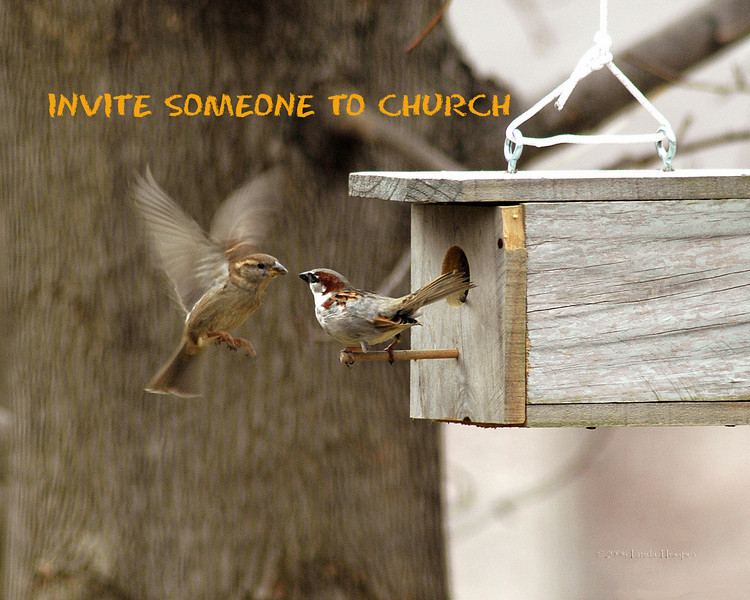 Invite someone to church this week