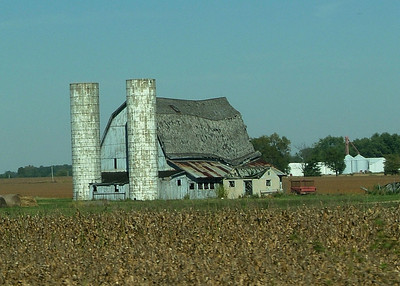This barn has become a friend as I've  watched it slowly collapsing. Today the roof has completely fallen into the frame