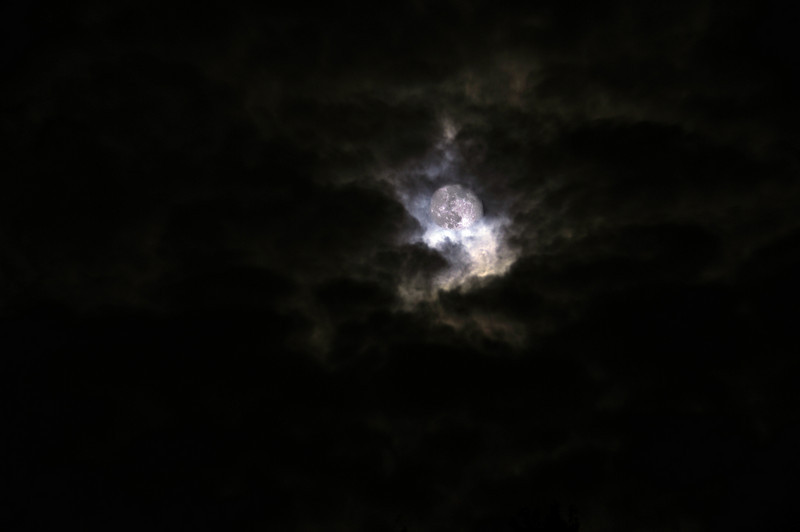This moon wove in out behind the clouds this cool October evening making for a spooky atmosphere