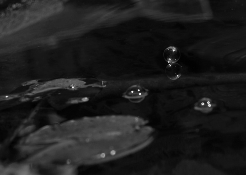This is a grayscale photograph of a bubble dancing effortlessly on the surface of the water