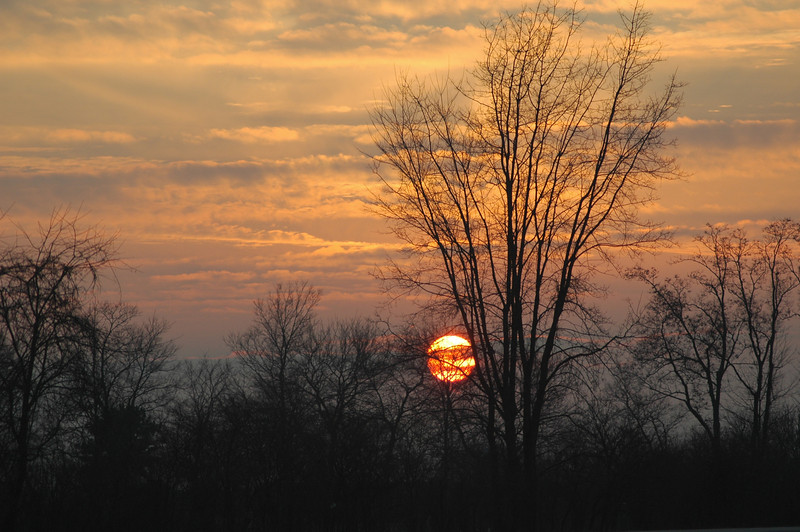 The silhouette of the trees' branches reveals the secret of the season this Indiana sunset was photographed. The clouds serve to lighten the background to make the silhouette so vivid and visible.