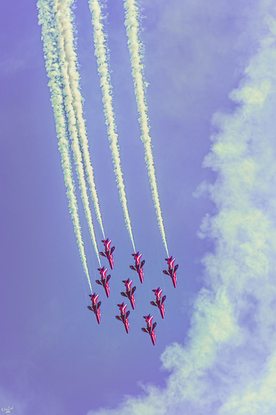 Diving In Formation