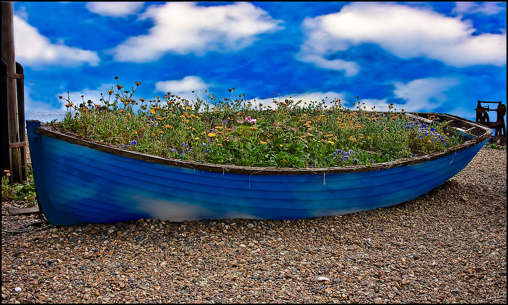 Skyboat with Plants
