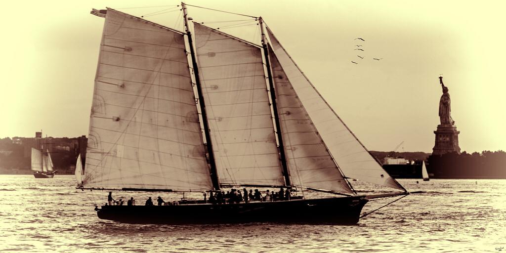 New York Harbor Sailboat