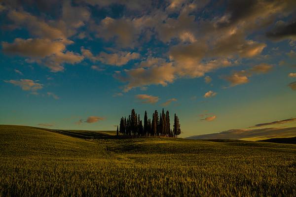 Tuscan Landscapes
