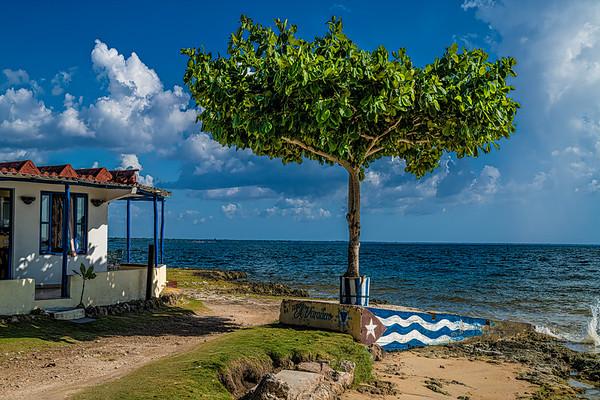 Afternoon -  24 Hours At Playa Larga