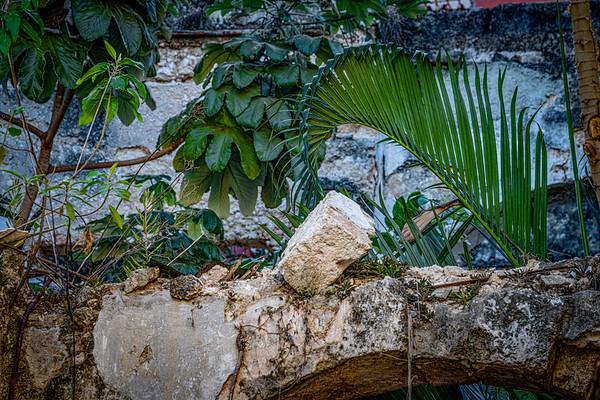 On The Streets Of Havana