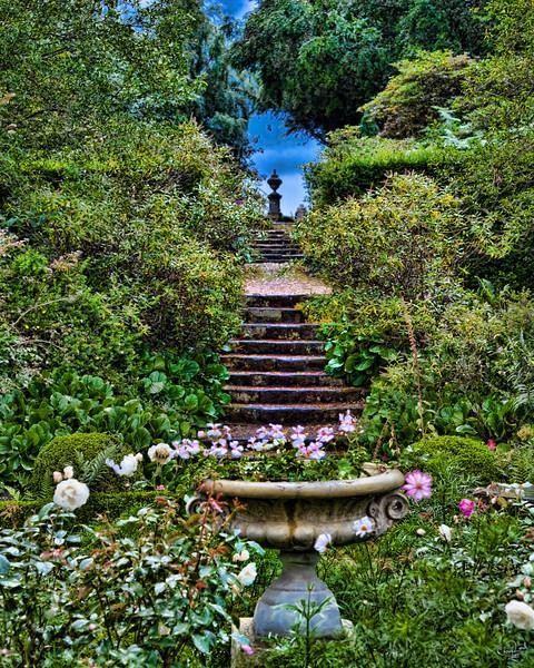 The Garden Steps
