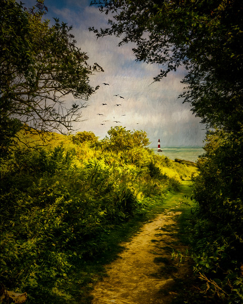On The Path To The Sea