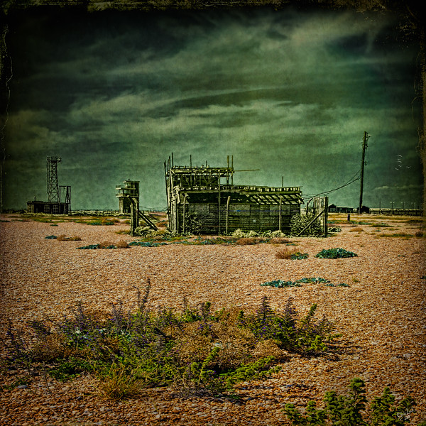 Base Camp Dungeness