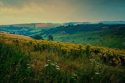 Devil's Dyke Landscape