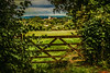 I Love The Countryside, a Pastoral Scene In West Sussex, UK