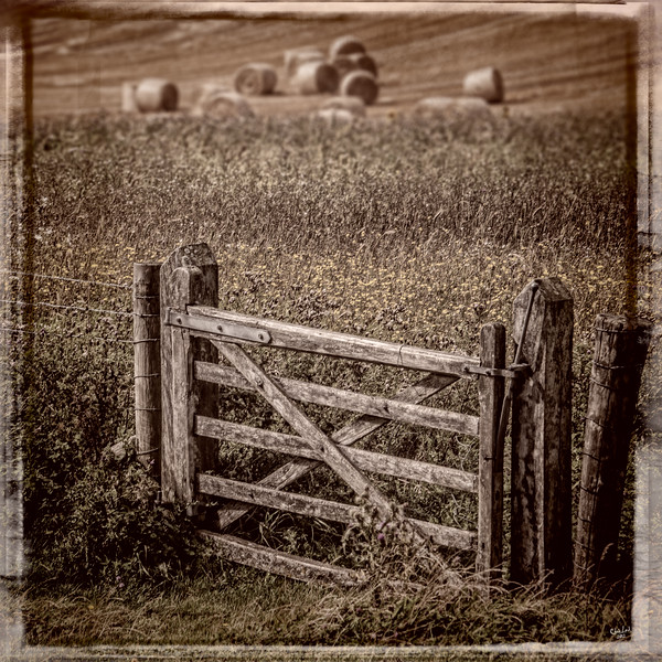 Country Gate, East Sussex, UK