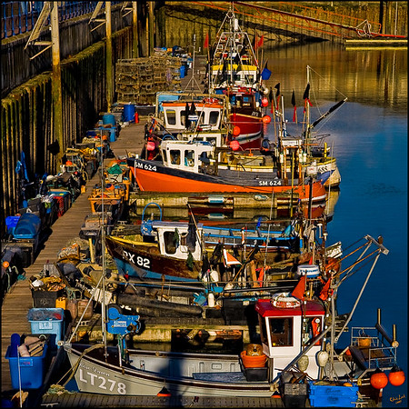 Fishing Fleet At The Brighton Marina, Black Rock