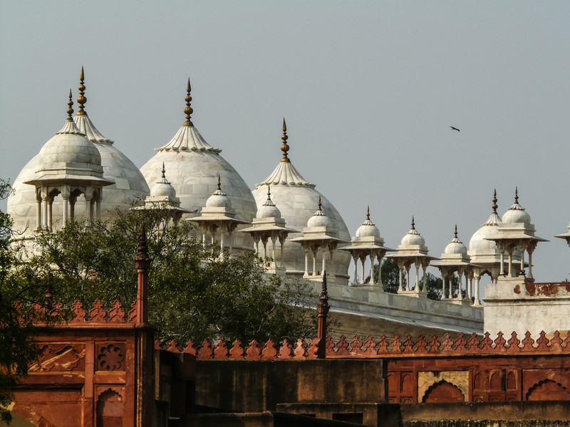 Domes of the Fort Palaces, Agra