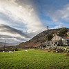 Sheep and Hill House, Capel Curig