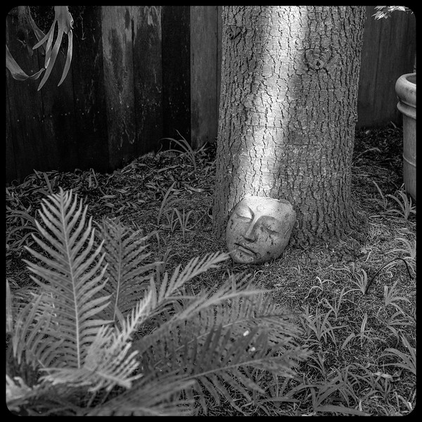 She who sleeps in the garden