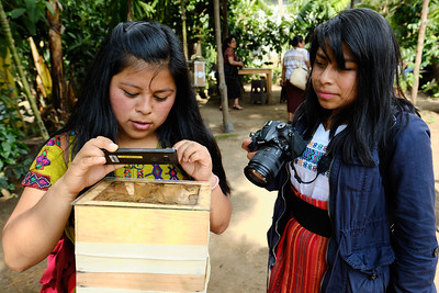 Mundo de Abejas Mayas - the World of Mayan Bees center in San Pedro La Laguna