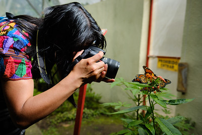 Students photographing the butterfly reserve at the Atitlán Nature Reserve in Panajachel
