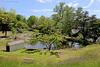 Beautiful pond at Cedarmere.