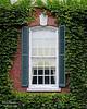 Rustic window on Westbury House at Old Westbury Gardens.