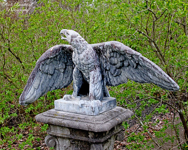 Eagle sculpture at Old Westbury gardens.