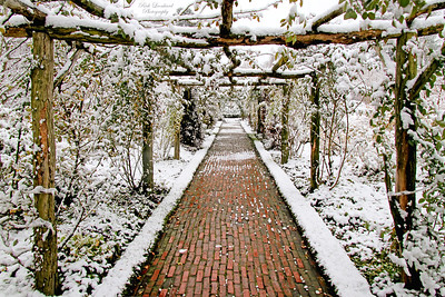 Pathway leading to the Rose Garden at Old Westbury Gardens.