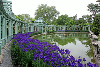Reflecting pool with Pergola Dome and trellis in Walled Garden at Old Westbury Gardens. Pretty blue Iris flowers at their peak of beauty.