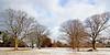Winter scene at Planting Fields Arboretum.