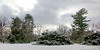 Snowy scene at Planting Fields Arboretum.