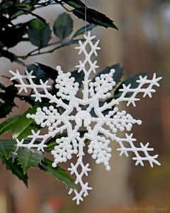 Holiday snowflake at Planting Fields Arboretum.