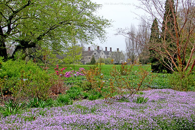 Coe Hall with pretty Spring flowers in Planting Fields Arboretum.