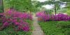 Springtime flowers at Planting Fields Arboretum.