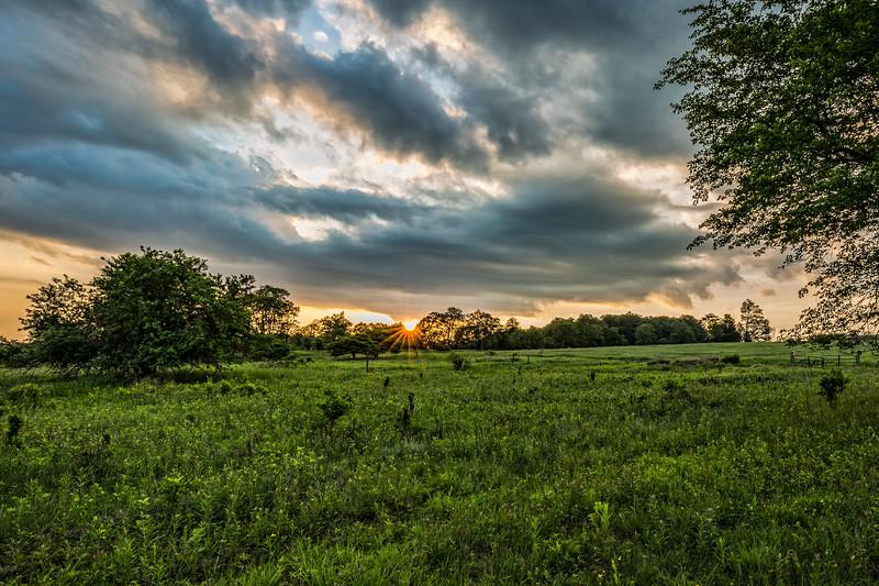 Beall Tract Sunrise