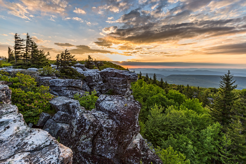 Bear Rocks Sunrise