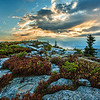 Bear Rocks - Dolly Sods