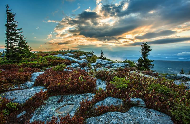 Bear Rocks - Dolly Sods