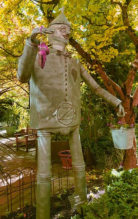 Tin Man. Actually shot at the Childern's Hospital in Portland.