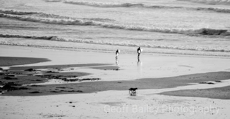 Two Surfers and a Dog - Langland Bay