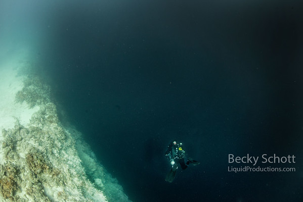 Over the edge : Descending into Belize Great Blue Hole