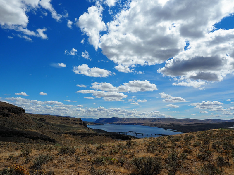 The view from the Wild Horses Monument. The mighty Columbia River.