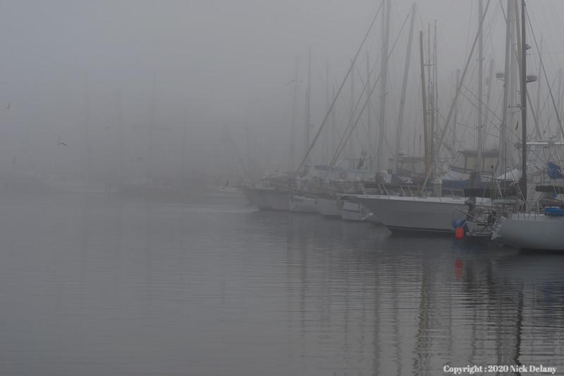 Mist at Moss Landing