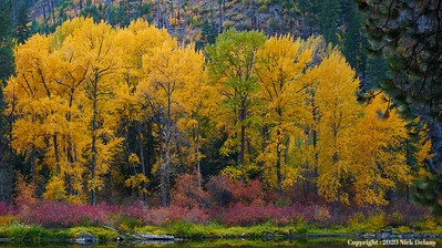 Autumn in Leavenworth WA