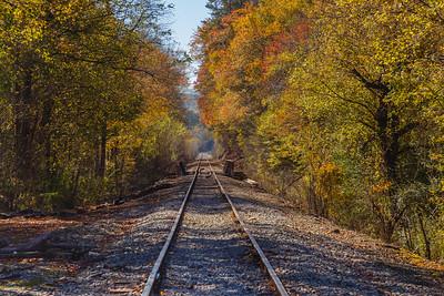 Tennessee Tracks