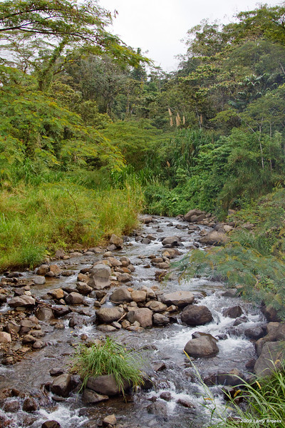 A typical roadside view in the Arenal area