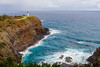 Kilauea Point NWR provides safe haven for albatross, red-footed boobies, white and red-tailed tropicbirds and many more.