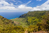 The lookout over Kalalau Valley on a clear day is nothing short of magnificent!