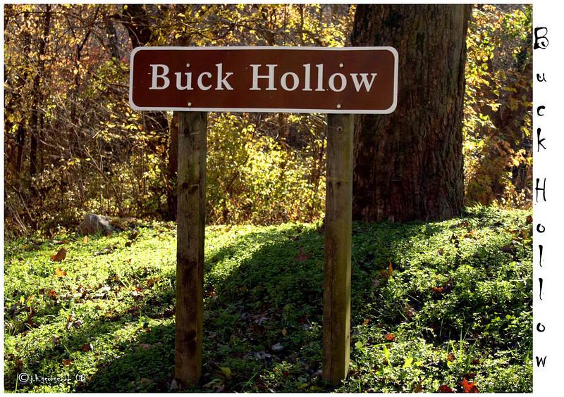 Buck Hollow