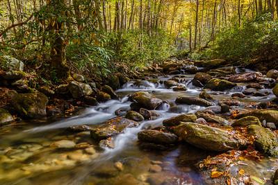 Beautiful mountain stream along the Roaring Fork Motor Nature Trail